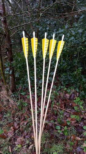 12 x Spine and Weight Matched Arrows